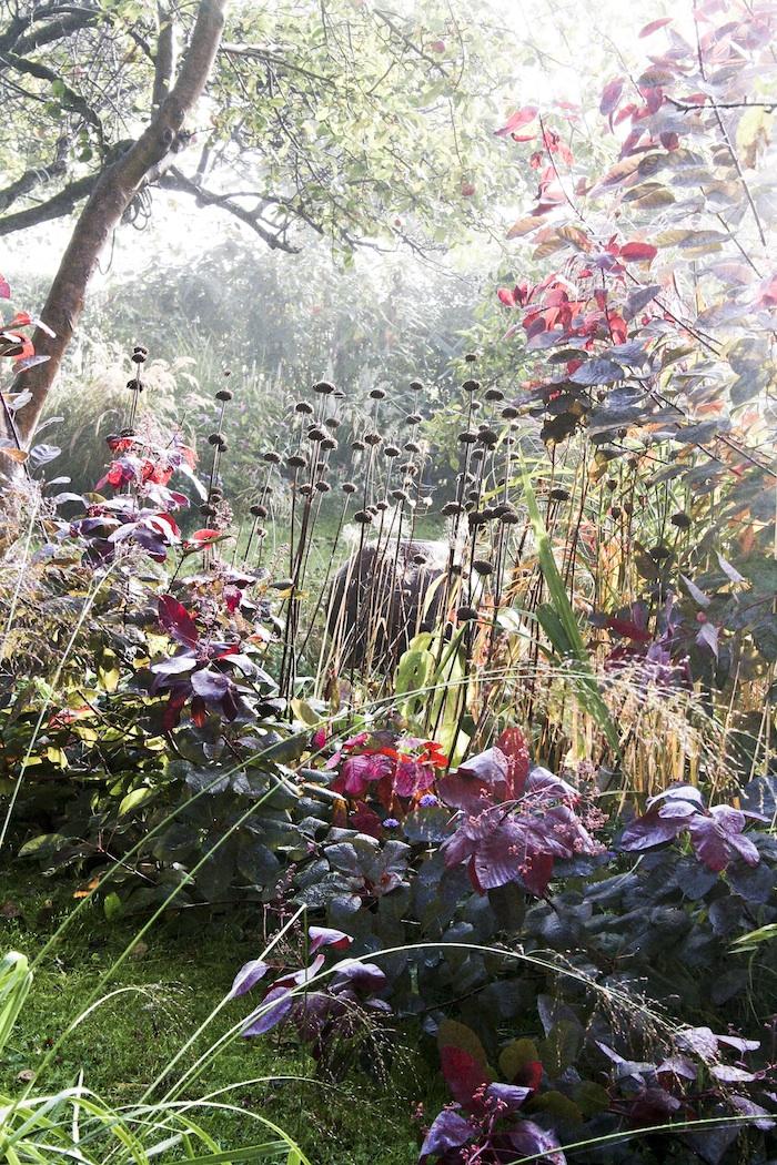 The Secret Garden – Sweden Ida Magntorn.